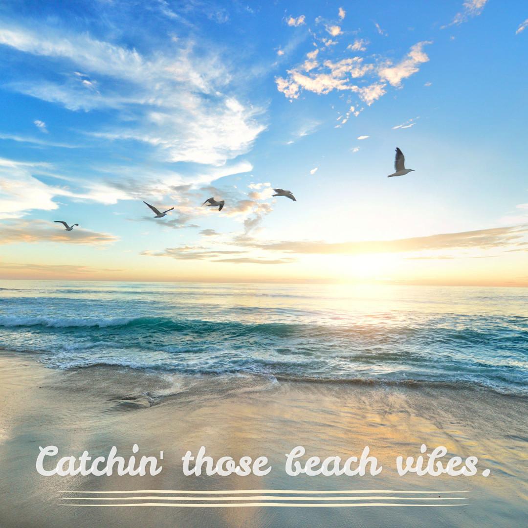 Catchin' those beach vibes