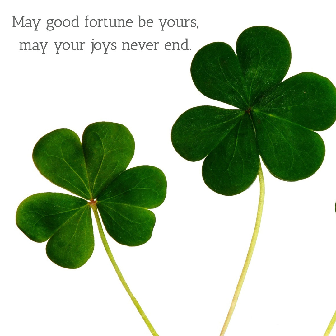 May good fortune be yours