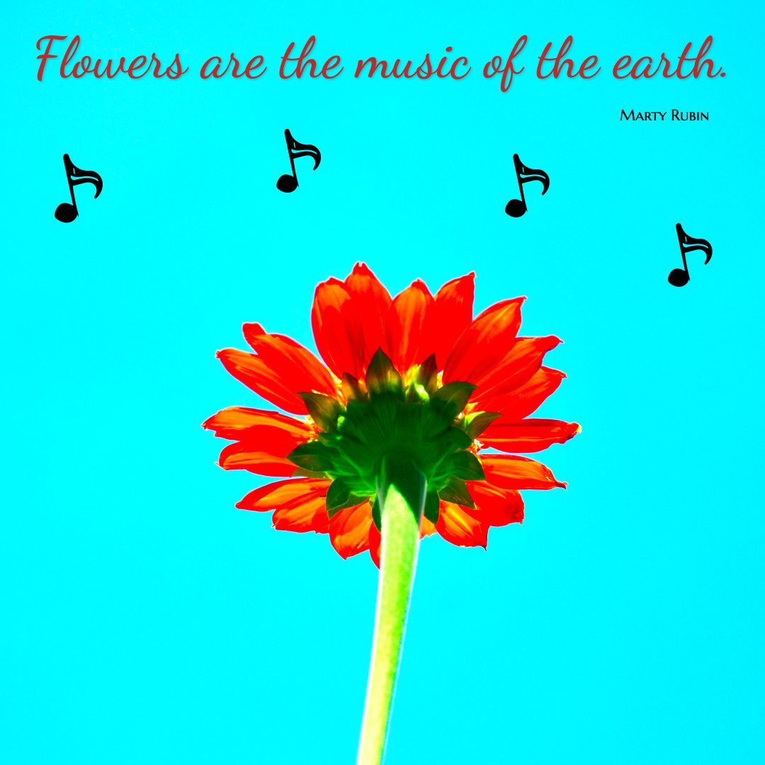 Flowers are music of the earth