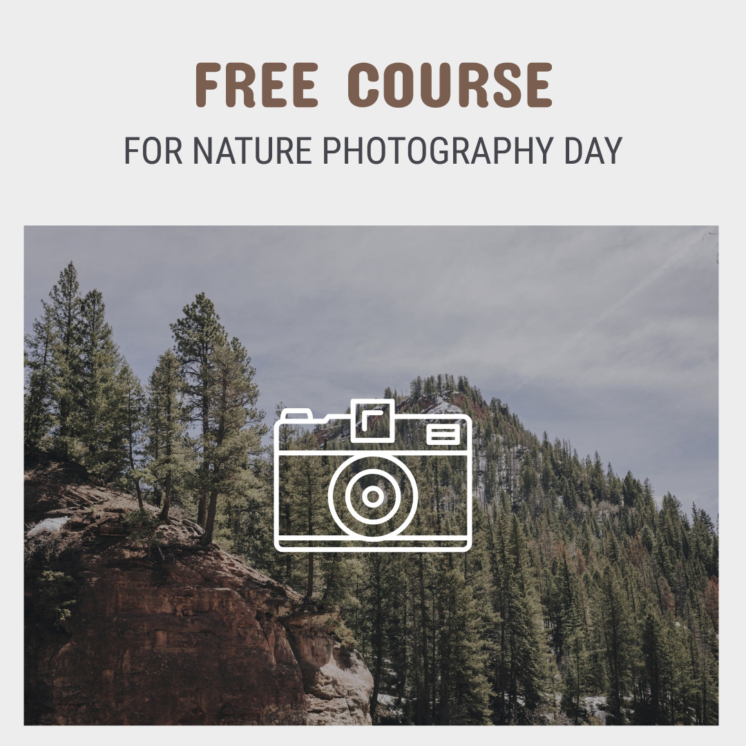 Free course for nature photography day