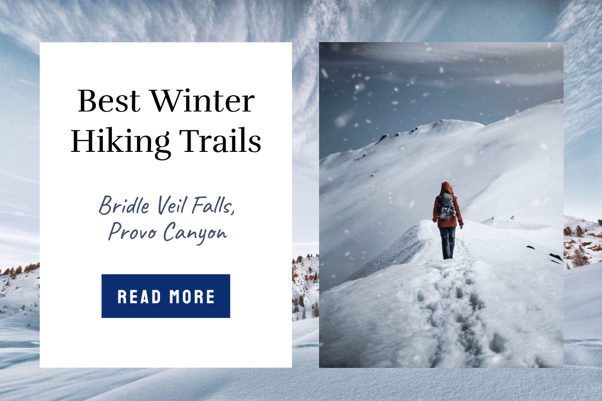 Best Winter Hiking Trails