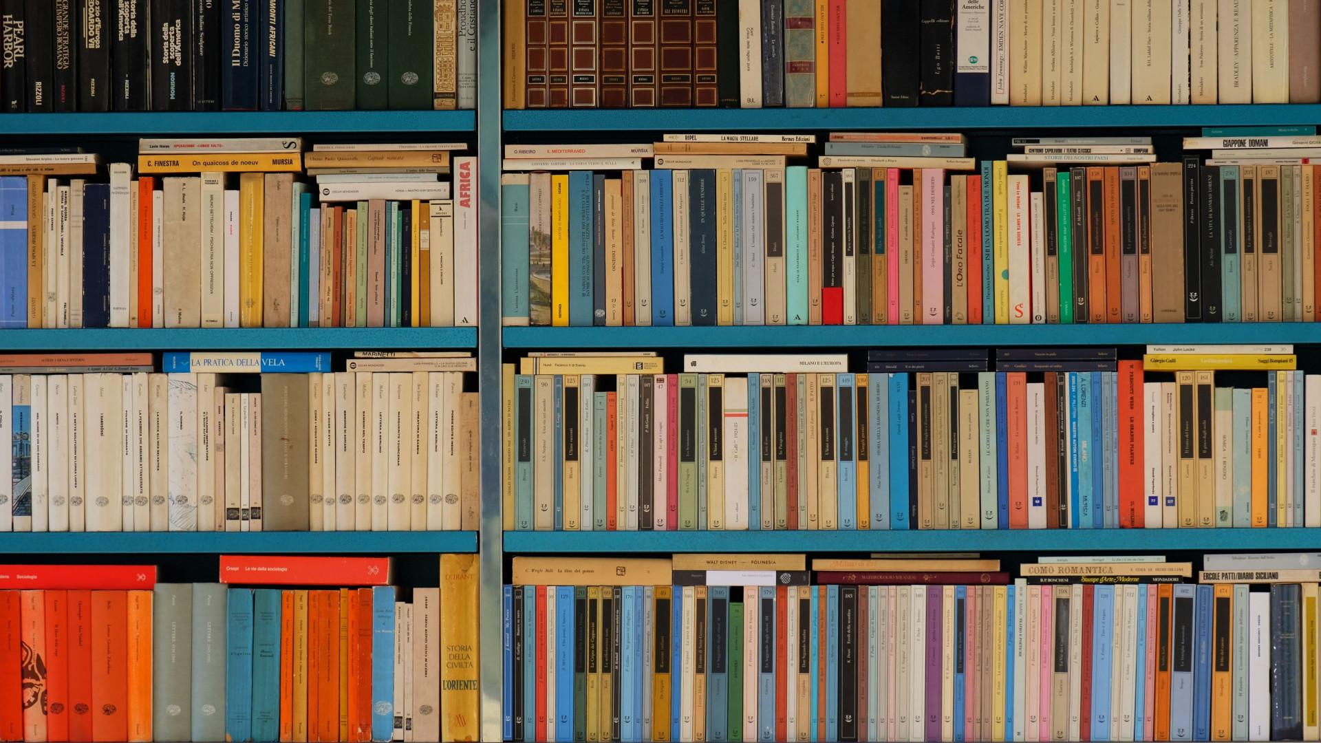 Blue Bookshelf - Zoom Virtual Background
