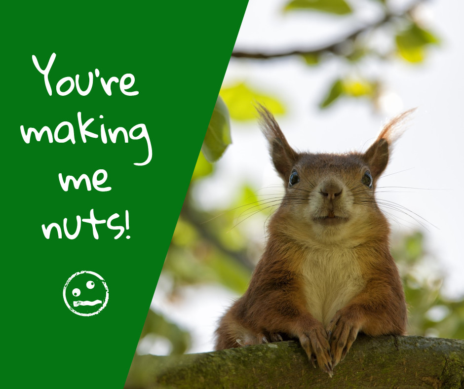 You're making me nuts