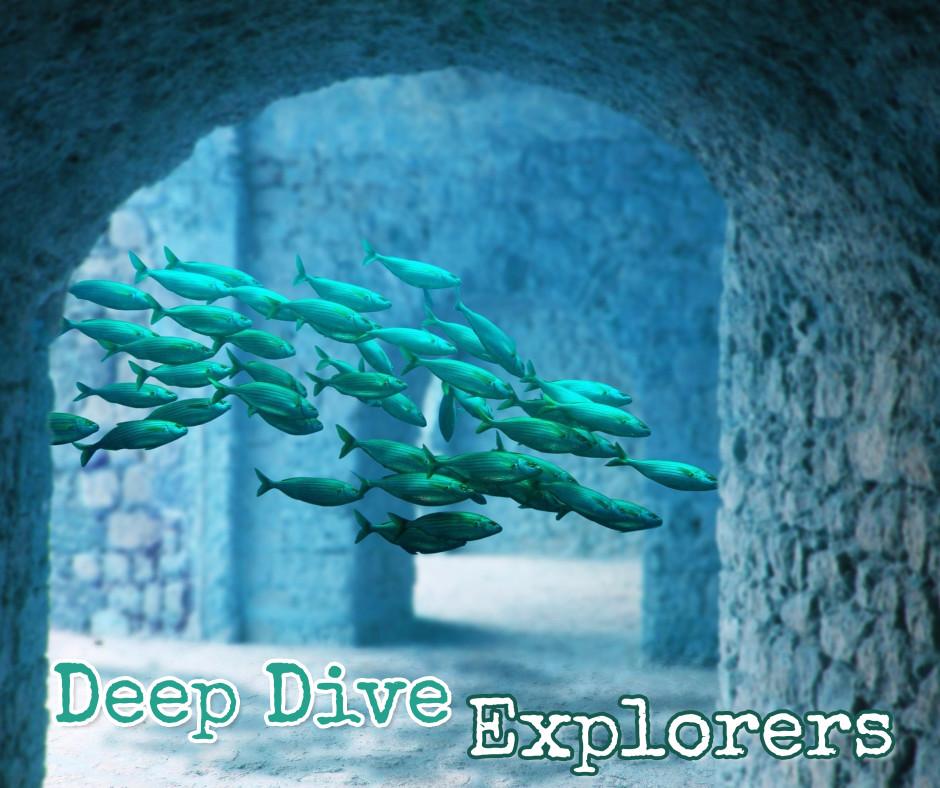 Deep dive explorers