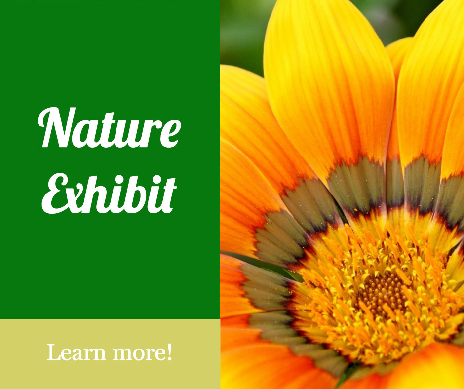 Nature exhibit - Learn more