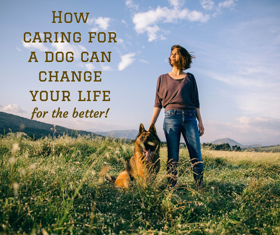 Caring for a dog can change your life