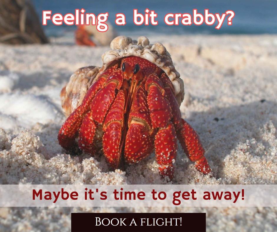 Feeling a bit crabby?