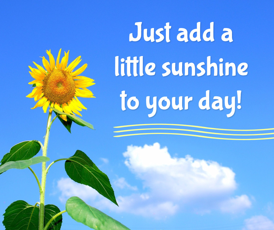 Sunshine to your day